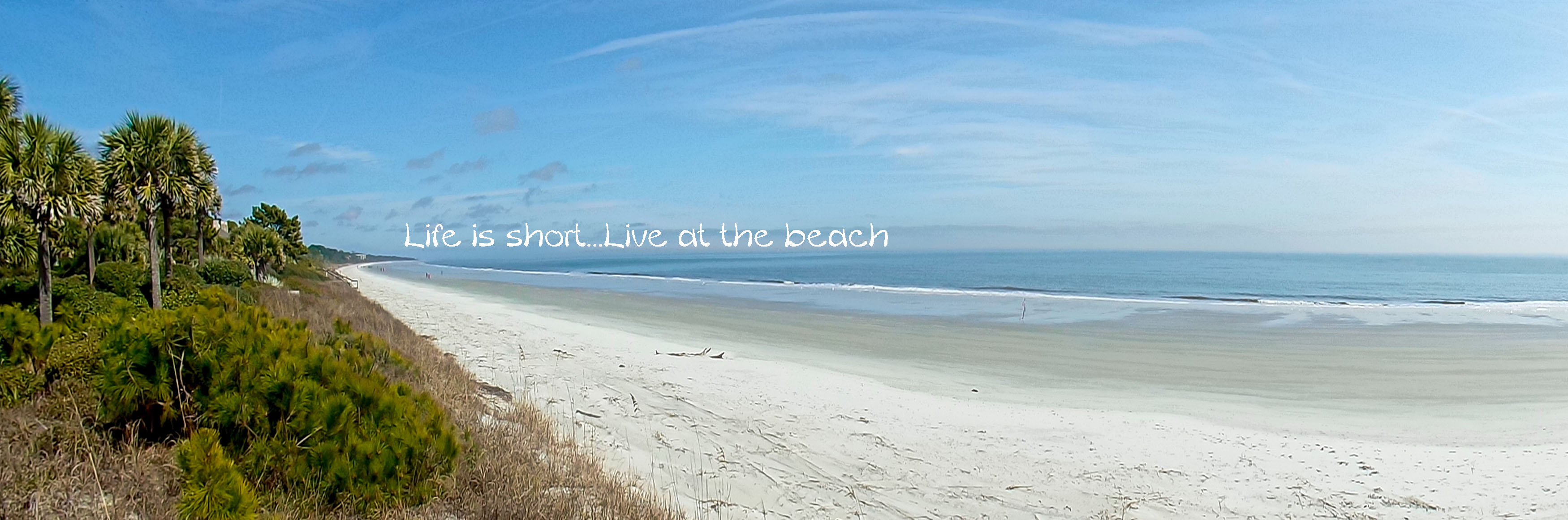 Things to Do on Hilton Head Island Winter/Spring 2019